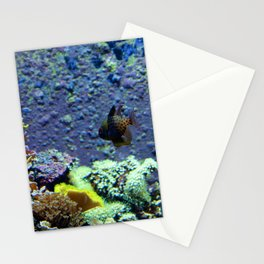 Beautifully Ugly Brown Fish Stationery Cards