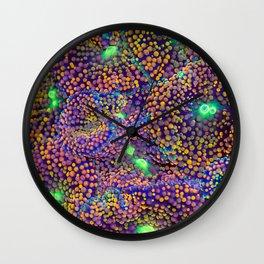 Ricordea Florida (mushroom coral) Wall Clock