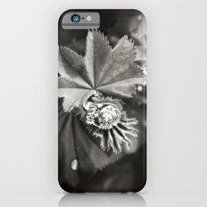 Secret Garden ~ No.11 Slim Case iPhone 6s