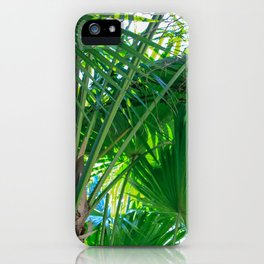 Sunny Tropical Palms 1 iPhone Case