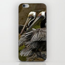 Brown Pelican iPhone Skin