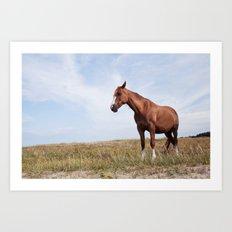 Horse iii Art Print