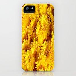 Golden Yellow Chrysanthemums iPhone Case