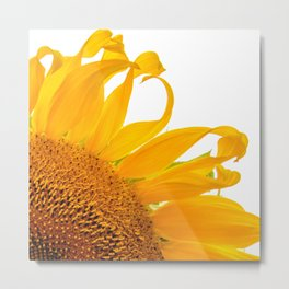 Hello Sunshine by Teresa Thompson Metal Print