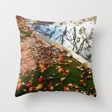 Wet December Morning in California Heights Throw Pillow
