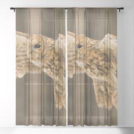 Tawny Owl in Flight Sheer Curtain