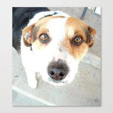 My dog. Canvas Print