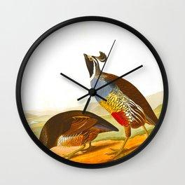 Scientific Bird Illustration Wall Clock