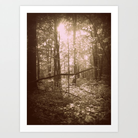 There's Something Magical About Trees Art Print