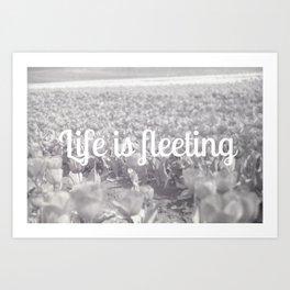 Life is fleeting Art Print