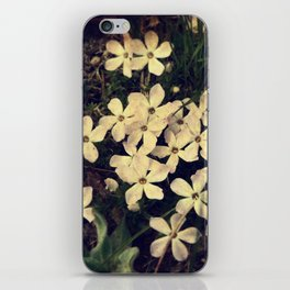 Phlox iPhone Skin
