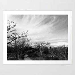 Path Through the Park II Art Print