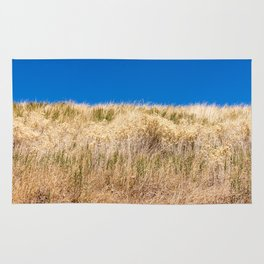 Dry grass meadow and blue sky Rug