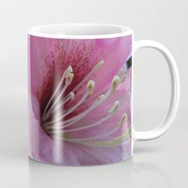 Garden Spring Flowers Pink Rhododendrons Coffee Mug