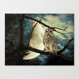 Barred Owl Bird Night Moon Blue Tans Country Art A137 Canvas Print