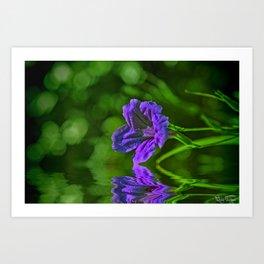 Delicate Flower.... Art Print