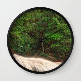 Spring Swallow Falls Wall Clock