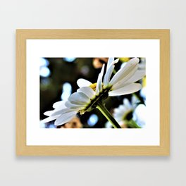 Flower No 4 Framed Art Print