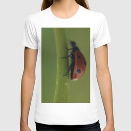 Ladybird on a Flower, macro photography, home, still life, fine art, animal love, nature photo T-shirt