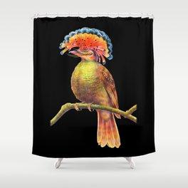 Royal Flycatcher Shower Curtain