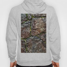Rock Wall with Moss Abstract Hoody