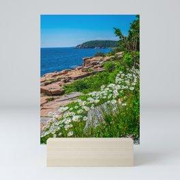 Acadia National Park Wildflowers Maine Mini Art Print