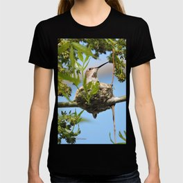 Hanging Out Over B Street T-shirt