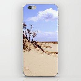 dust in the wind iPhone Skin