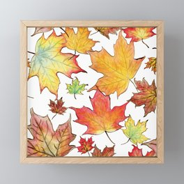 Autumn Maple Leaves Framed Mini Art Print
