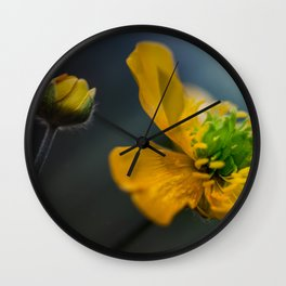 Two similar worlds Wall Clock