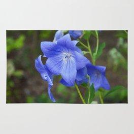 Floral Print 066 Rug