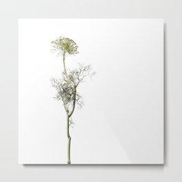 Floral Study #4 Metal Print