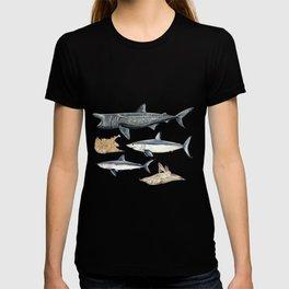 Shark diversity T-shirt