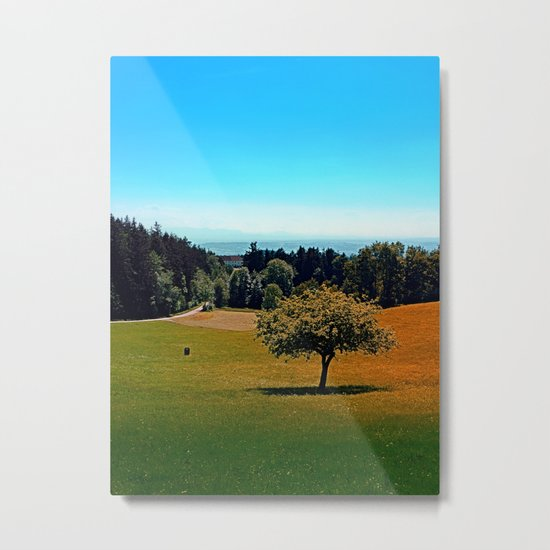 Another lonely tree in summer Metal Print