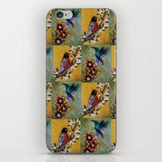 Hummingbird and Robin iPhone & iPod Skin