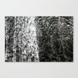 La Coca, El Yunque Rainforest in Puerto Rico waterfall Canvas Print