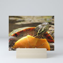 PAINTED TURTLE - WITH ATTITUDE Mini Art Print