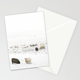 Icelandic Sheep IIII Stationery Cards