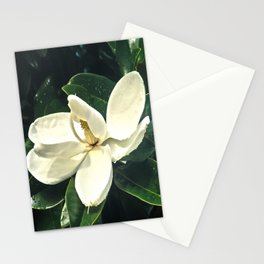 A New Day Begins Stationery Cards