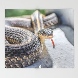 Garter snake with its tongue out Throw Blanket