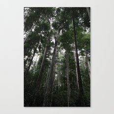 Ascending Canvas Print