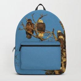 Five of Nine Alaskan Bald Eagles Perched Backpack