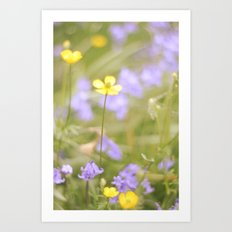 pretty florals Art Print