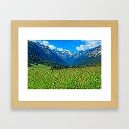 Bergwiese mit Talschluss Framed Art Print