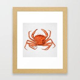 Crab - Watercolor Framed Art Print