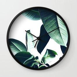 Ficus Elastica #26 #foliage #decor #art #society6 Wall Clock