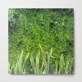 muro verde Metal Print