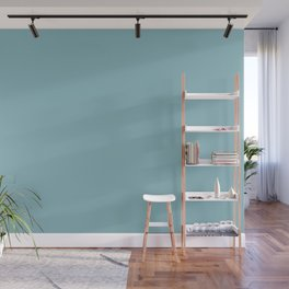 PPG Glidden Kingston Aqua (Pastel Blue Green) PPG1150-4 Solid Color Wall Mural