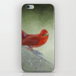 Song of the Summer Tanager 4 - Birds iPhone Skin