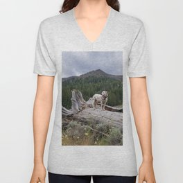 Charlotte in Muldoon Canyon Unisex V-Neck